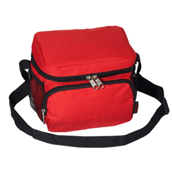 #CB6 - Insulated Cooler/Lunch Bag